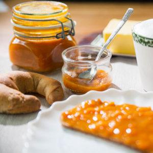 Rezept Aprikosen Konfitüre zuckerfrei